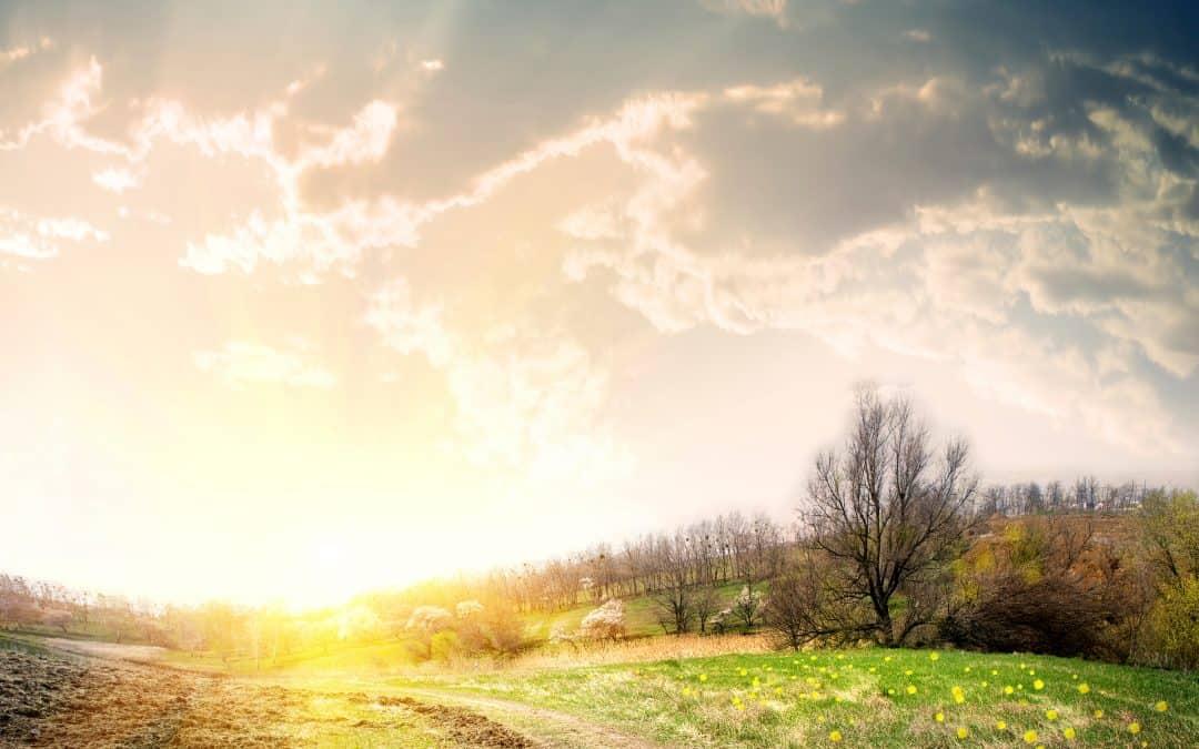 Where God's Glory Dwells (November 19)