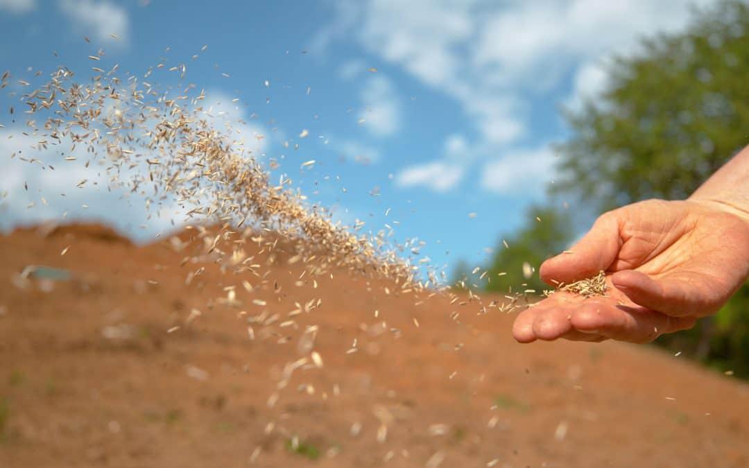 Different Soils, Different Hearers (June 16)